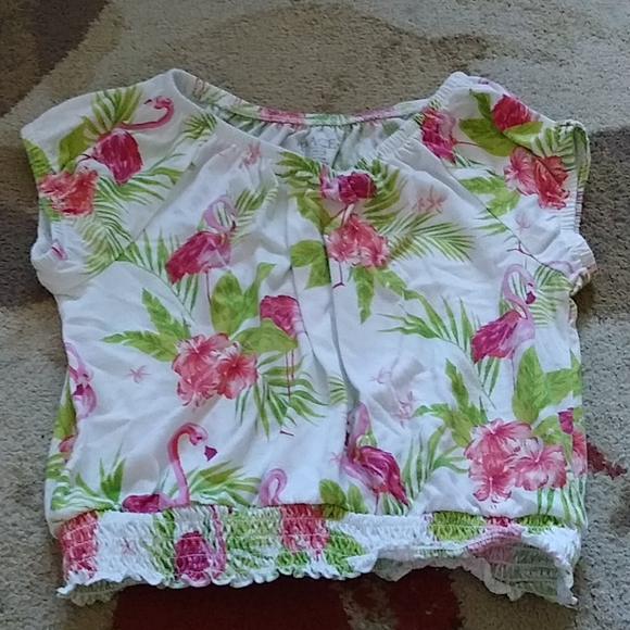 Flamingo crop top